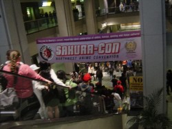Welcome to Sakura-Con!