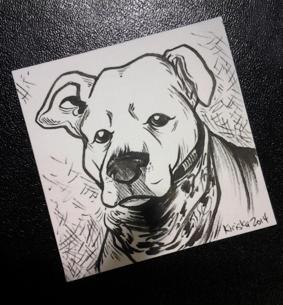 The pet portrait commission I had. The commissioners provided the little square piece of paper!