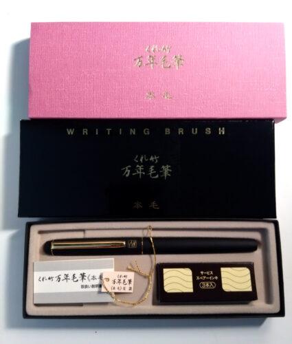Look at this beautiful pen in its beautiful box(es).
