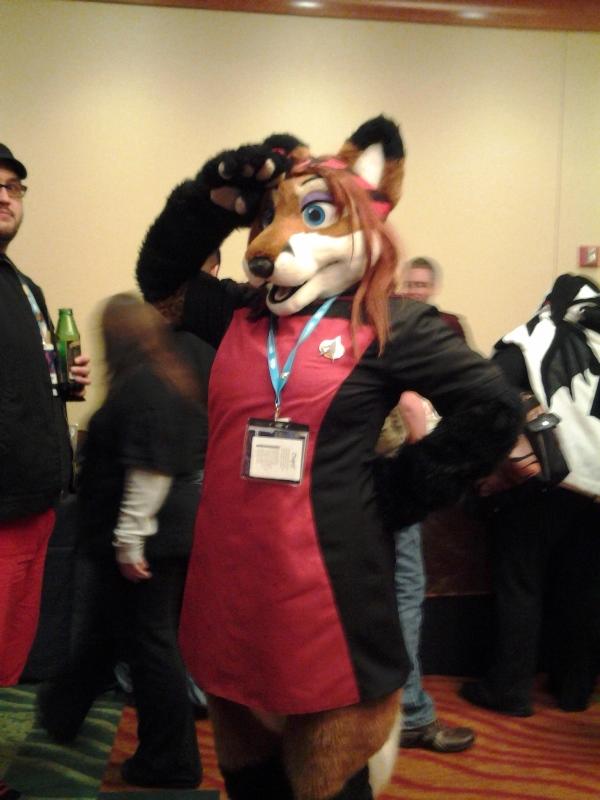 Trekkie fox.