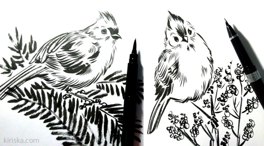 Left: Pentel pocket brush; right: Kuretake #8.