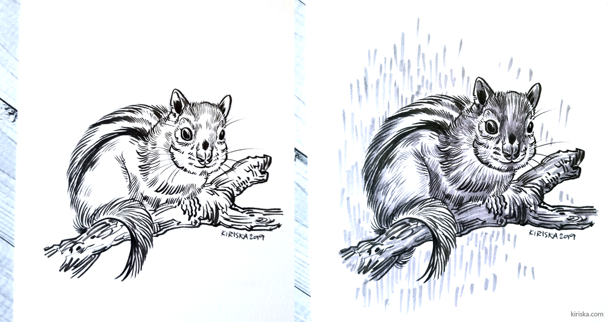 Drawing of a chipmunk inked with Zebra brush pen (super fine) and toned with Zebra Usu-Zumi.