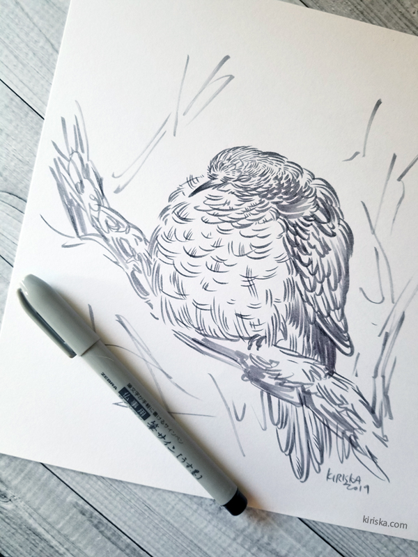 Sketch of a sleeping bird using the Inked with Zebra Usu-Zumi brush pen