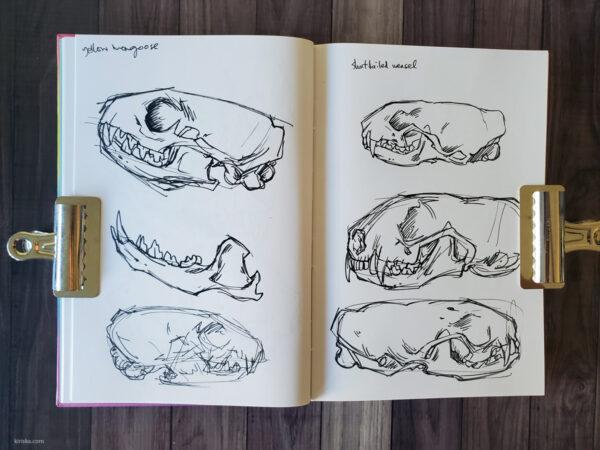 Barnes & Noble rainbow sketchbook