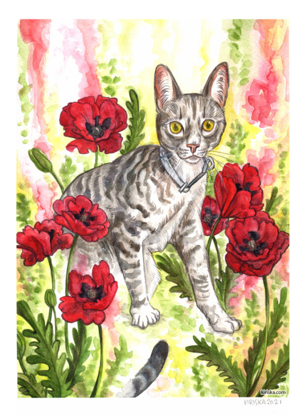 Marble and Poppies