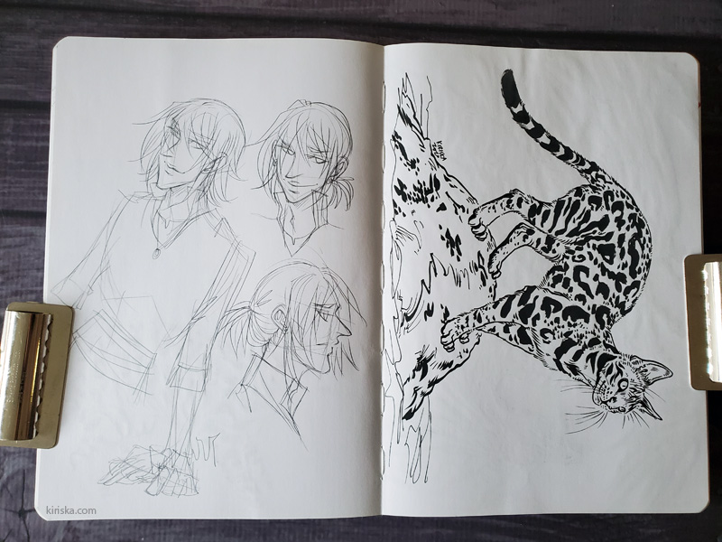 Open sketchbook with character sketches on one side and an ink drawing of a bengal cat on the other side.