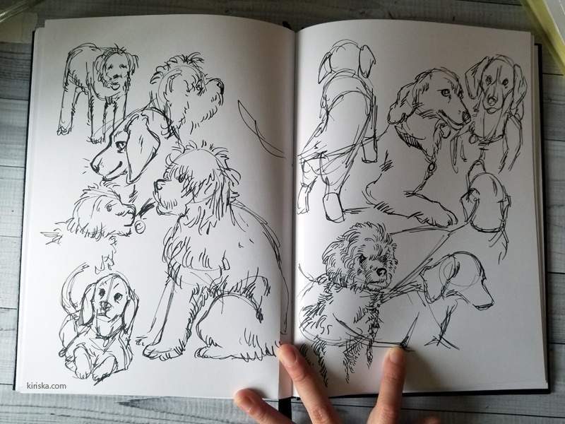 Photo of an open sketchbook with dog sketches