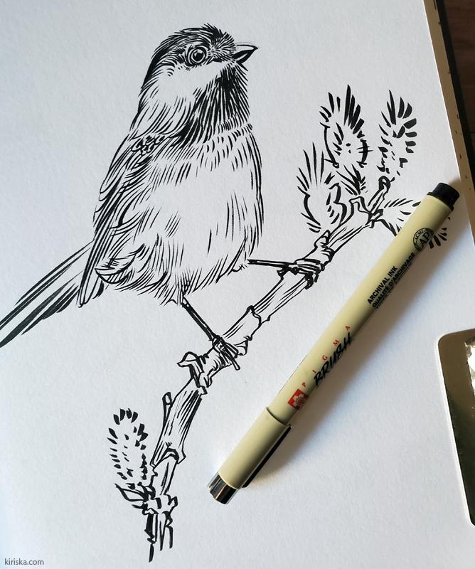 Drawing of a chickadee with the Sakura Pigma Brush pen