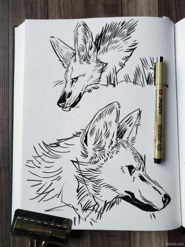 Maned wolves with Sakura Pigma Brush