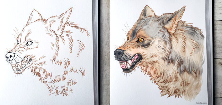 Wolf drawing with Tombow Fudenosuke and Copic markers