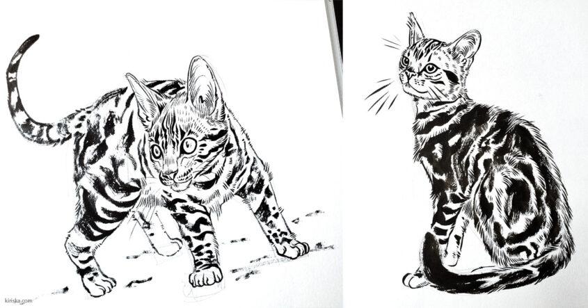 Cat drawings with Pentel (Standard) Brush Pen VS Pentel Pocket Brush (Pen)
