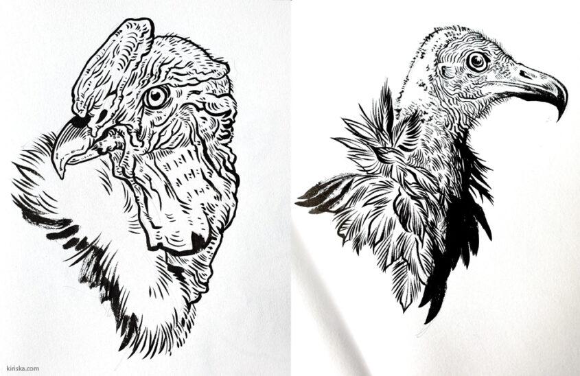 Vulture drawings with Pentel (Standard) Brush Pen VS Pentel Pocket Brush (Pen)