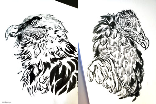 Vulture drawings with Pentel Brush Pen - extra fine