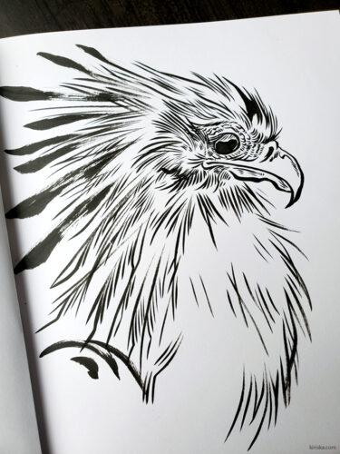 Ink drawing of a secretary bird
