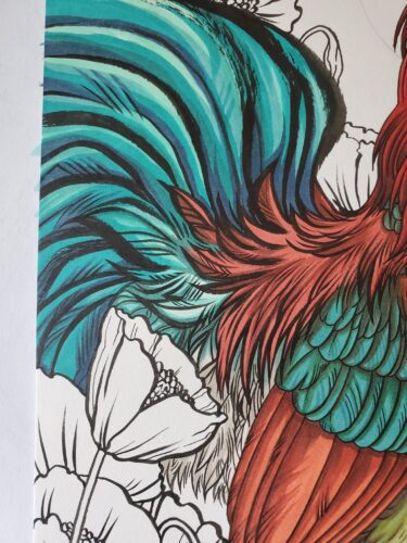 Year of the Rooster coloring process