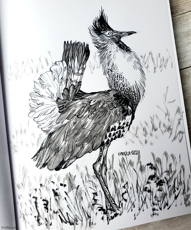 Drawing with Pentel Brush Pen and Pentel Arts Aquash Pigment Ink Brush