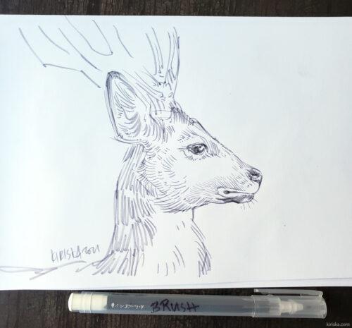 Sika deer drawing with the Kuretake Karappo felt brush pen
