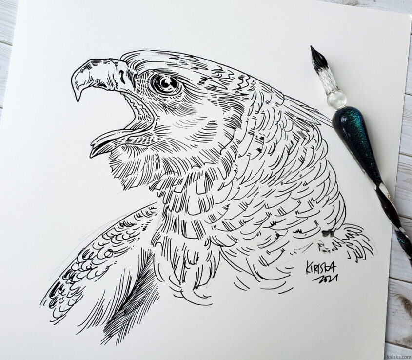 Harpy eagle with Moonman glass dip pen and an unidentified black India ink